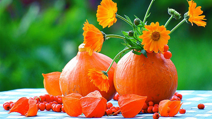 Картинки по запросу оранжевое настроение