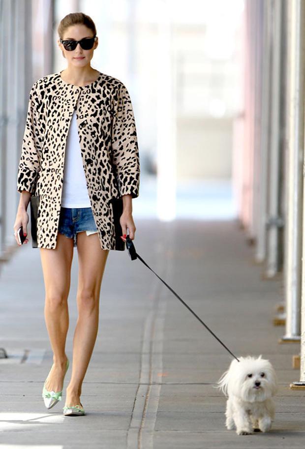Olivia-Palermo_leopard-leather-paula-joye-lifestyled
