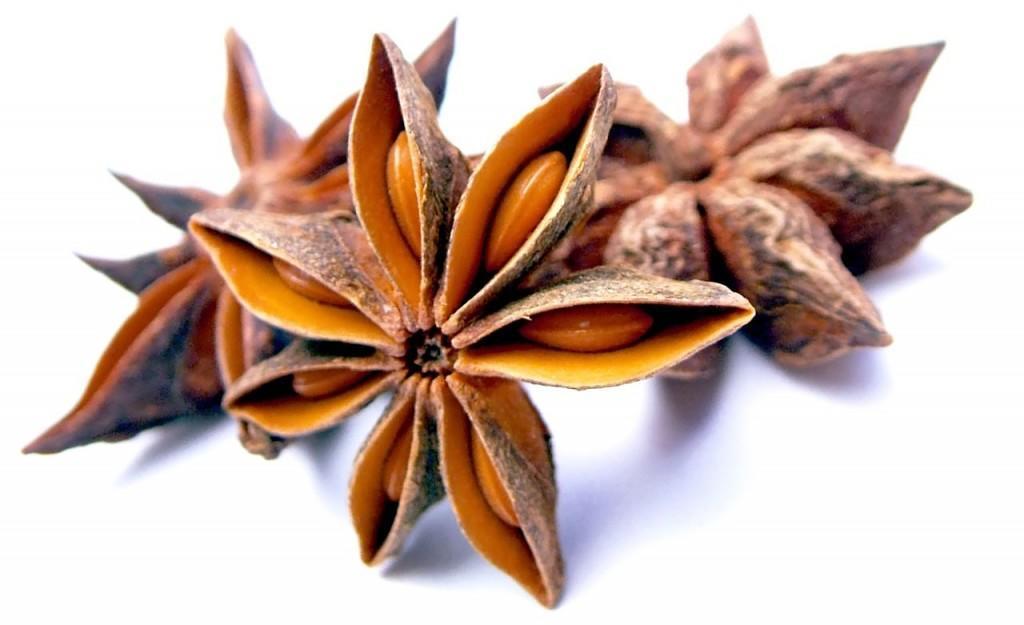 anise-herbal-tea-herbs