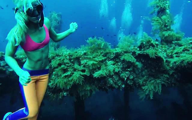 divingship