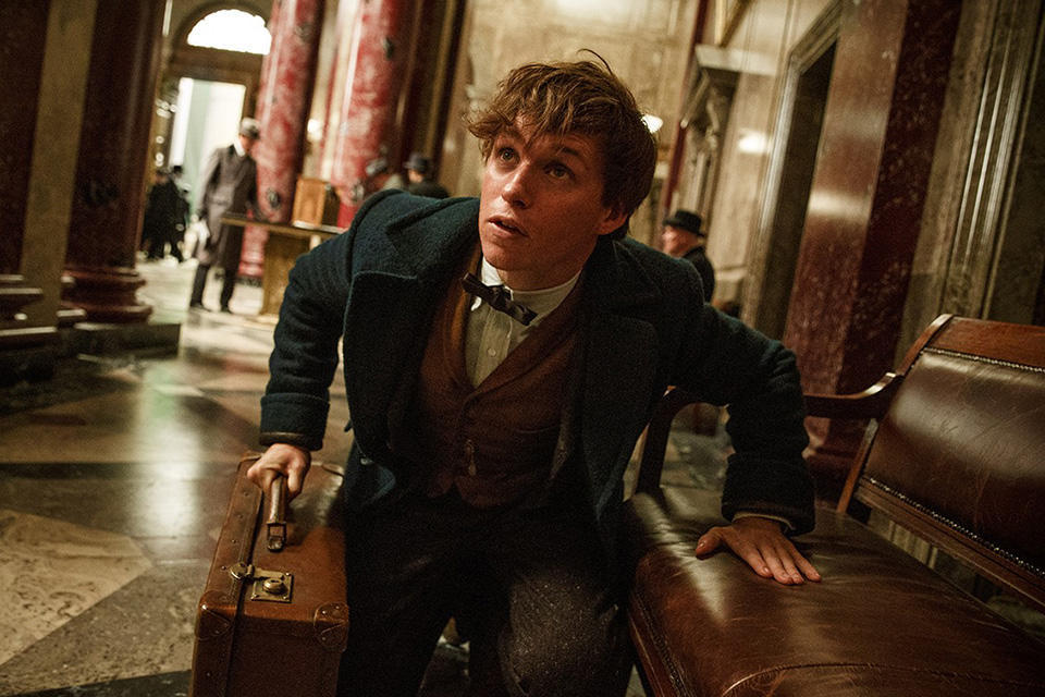 kinopoisk.ru-Fantastic-Beasts-and-Where-to-Find-Them-2701935