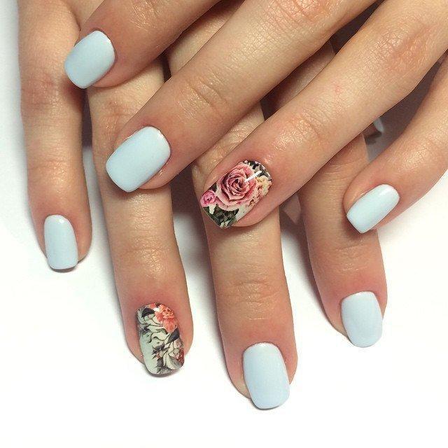 1454574131_slaid-roza-pastelnyi-stvet