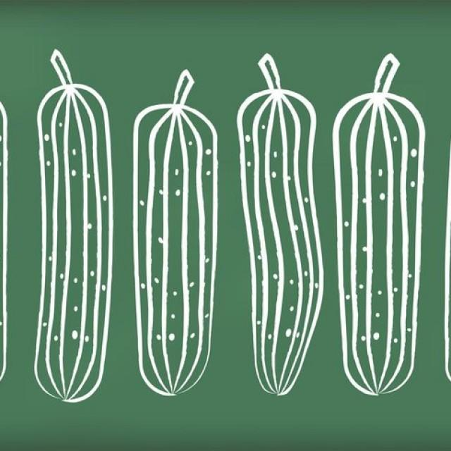 wpid-chalk-drawn-cucumber-vectors-640x640