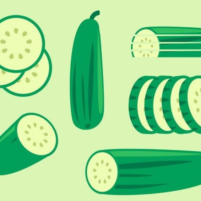 wpid-cucumber-vectors-640x640