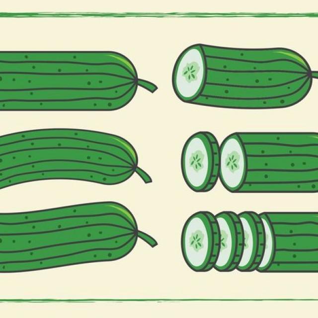 wpid-cucumber-vectors1-640x640